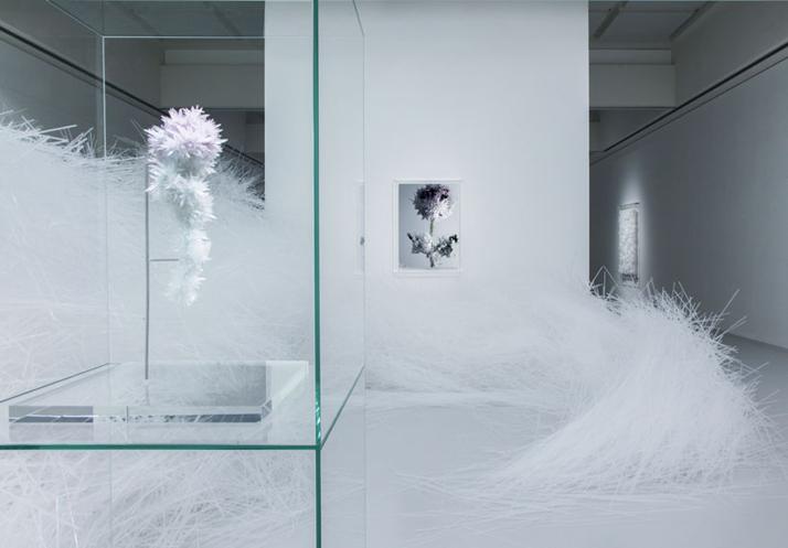 0-Crystallize-Tokujin-Yoshioka-Museum-of-Contemporary-Art-Tokyo-yatzer